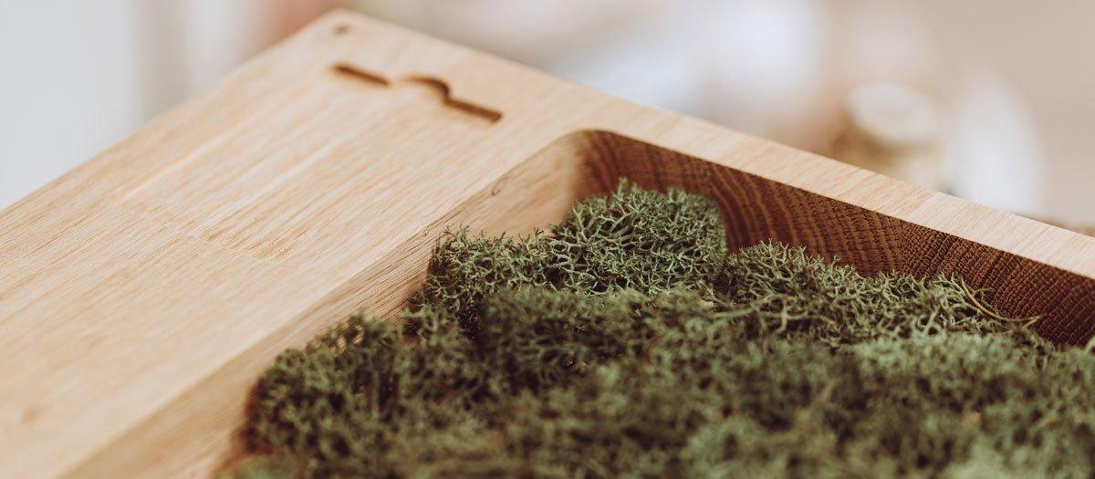 Schuster Innenausbau – Individuelle Fotobox aus Massivholz Eiche
