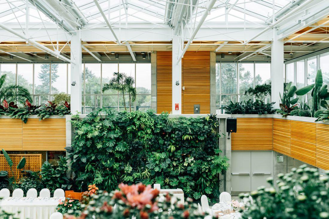 Schuster Innenausbau – Living wall – Ein Wandgarten für Ihr Zuhause